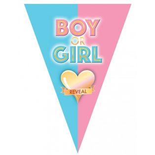 ZÁSZLÓFÜZÉR, BOY OR GIRL