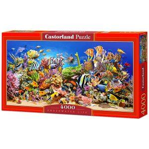 1000 + darabos puzzle