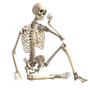 Halloween csontvázak, pókok-pókhálók
